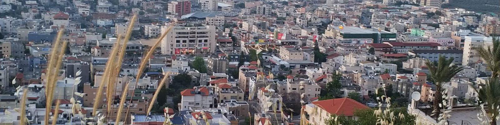 תצפית על העיר סח_נין
